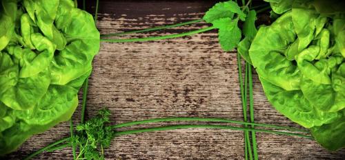 Agriturismo Campodeifiori verdure 676